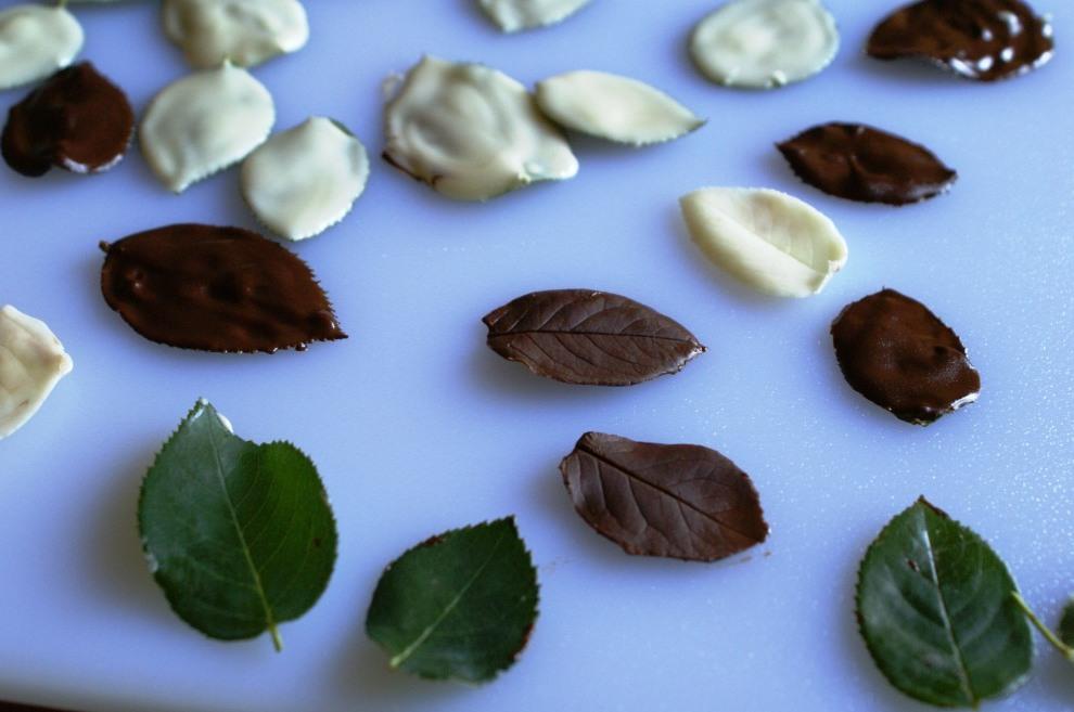 Cake Decorating Chocolate Leaves : No bake Blueberry-Yogurt Cake + DIY Chocolate Leaves ...