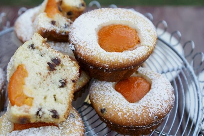 apricot chocolate chip muffins